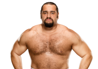rusev_pro-7d6c6cae6ad87787571849ee898d712a